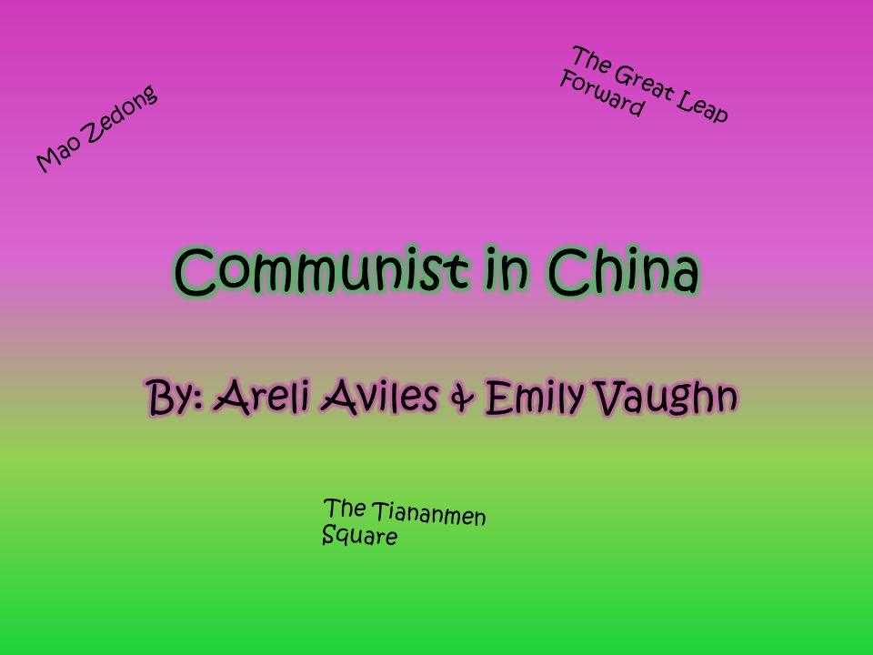 By  Areli Aviles   Emily Vaughn - ppt video online download 2f99c9d4ec5