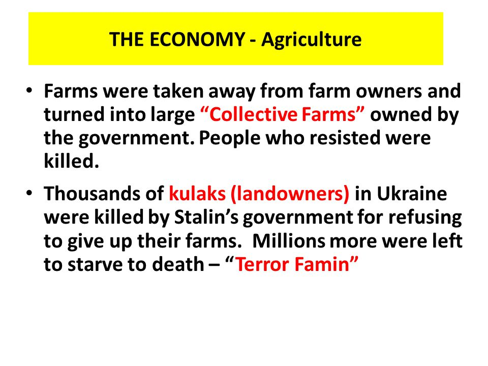 THE ECONOMY - Agriculture