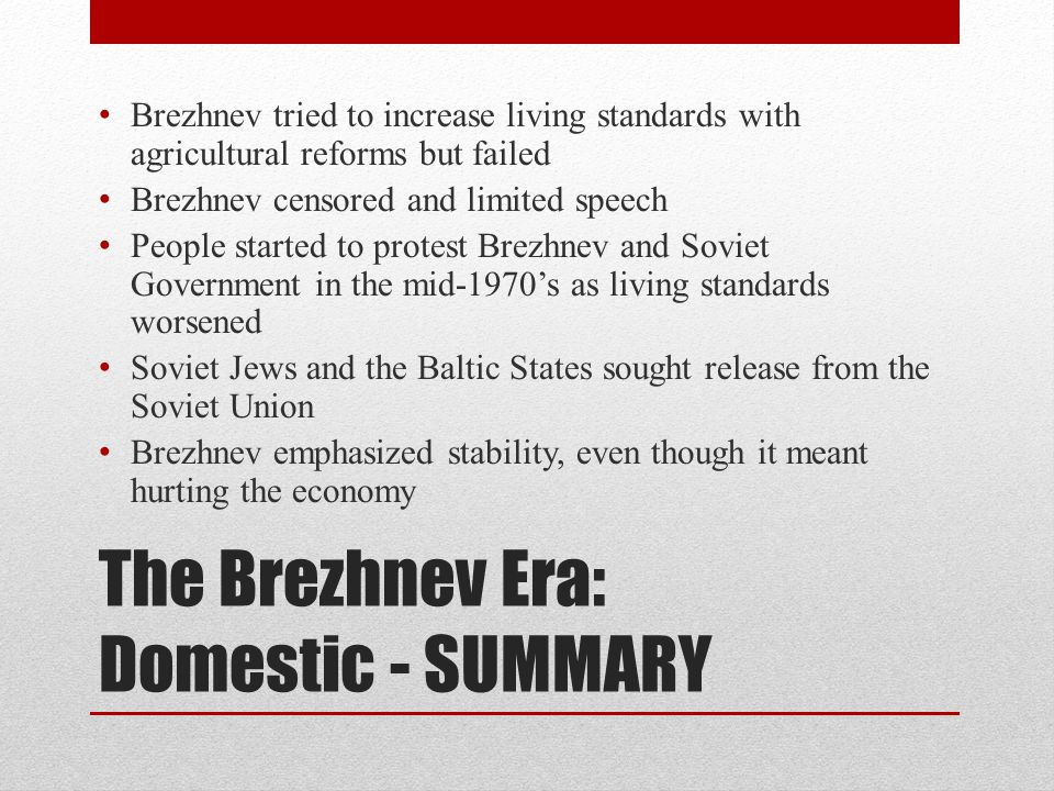 The Brezhnev Era: Domestic - SUMMARY