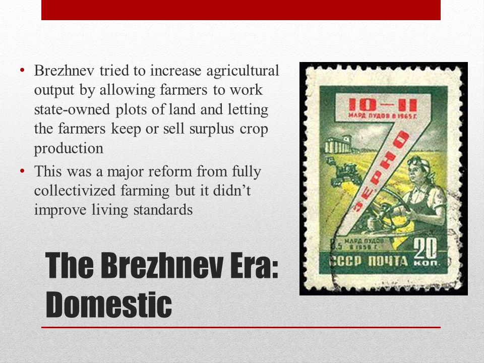 The Brezhnev Era: Domestic