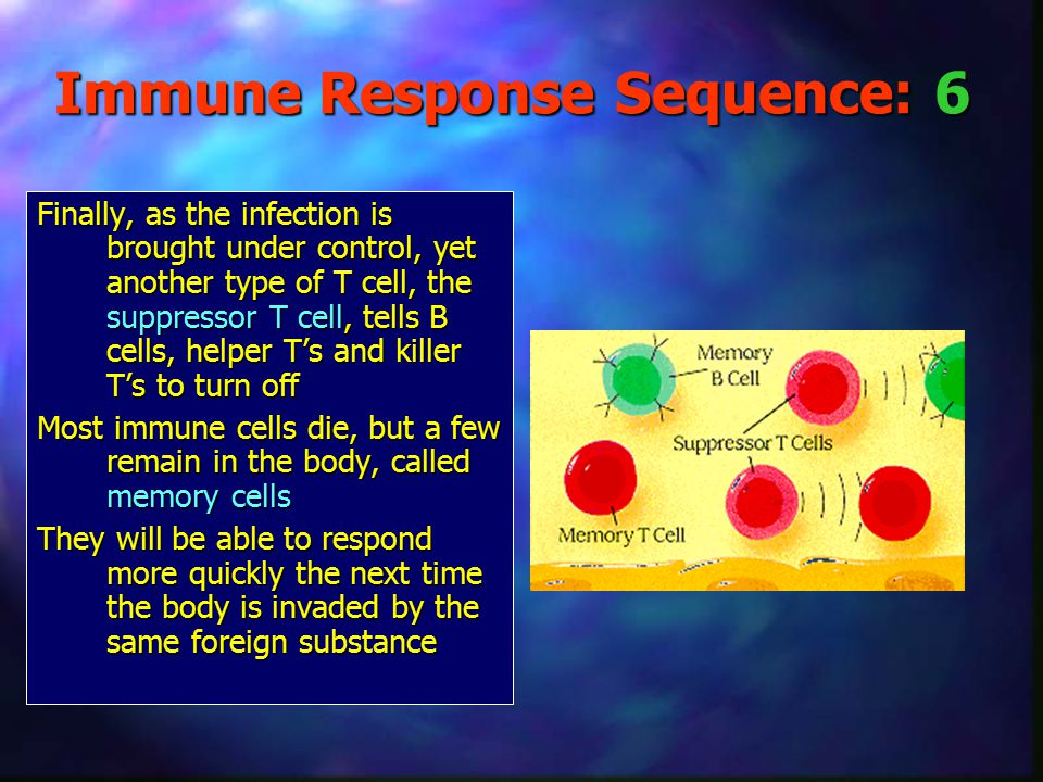 Immune Response Sequence: 6