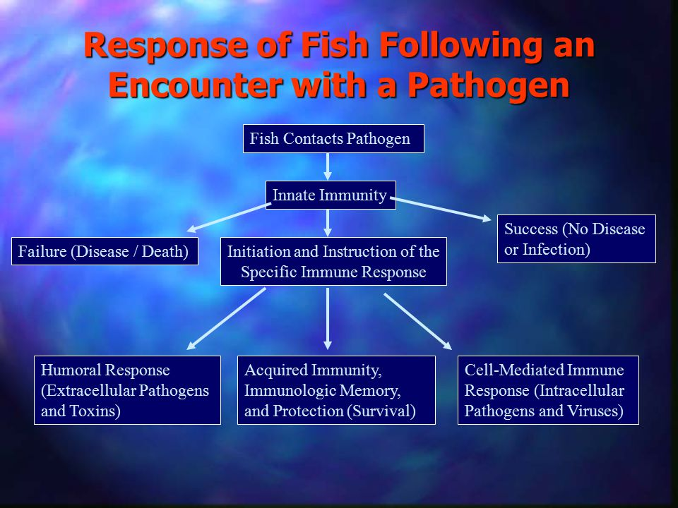 Response of Fish Following an Encounter with a Pathogen