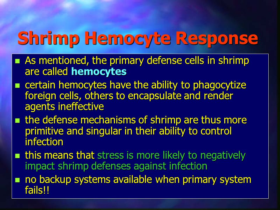 Shrimp Hemocyte Response