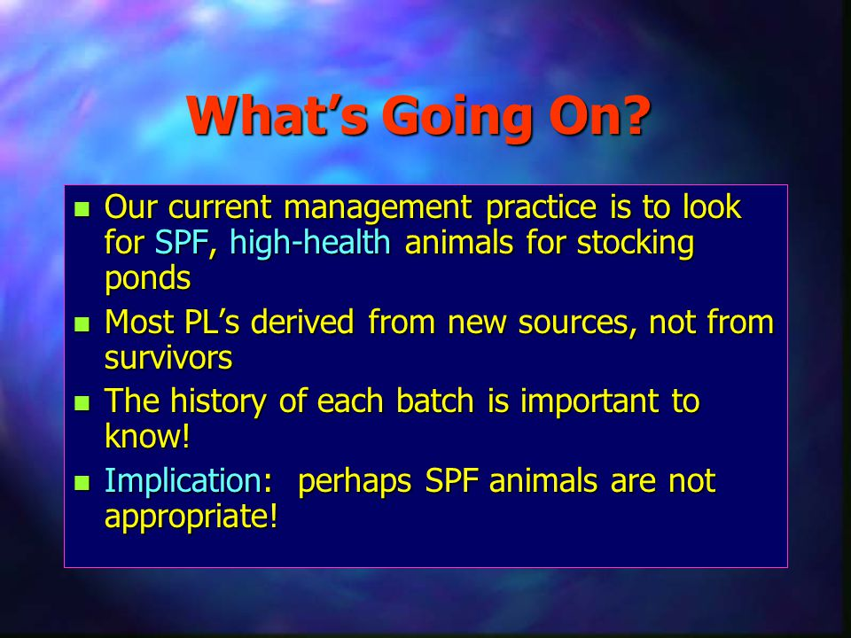 What's Going On Our current management practice is to look for SPF, high-health animals for stocking ponds.