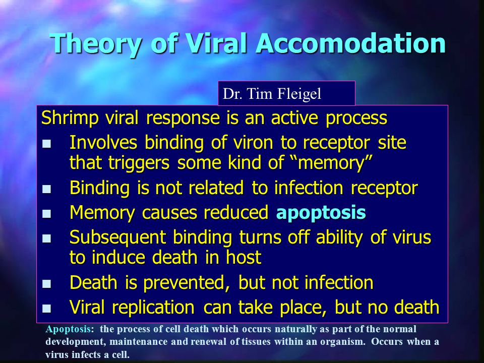 Theory of Viral Accomodation