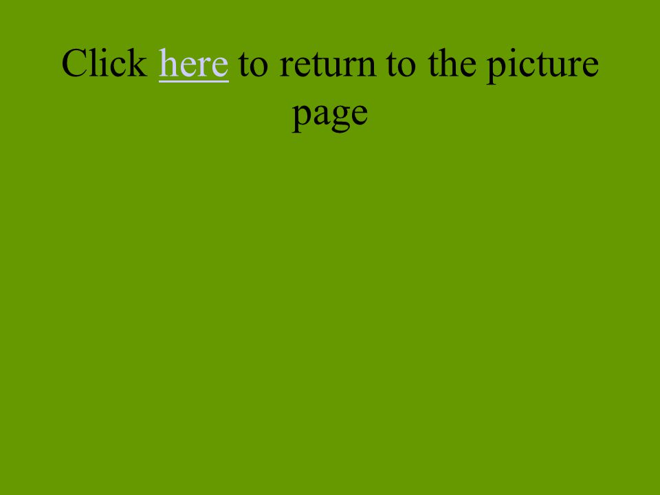 Click here to return to the picture page