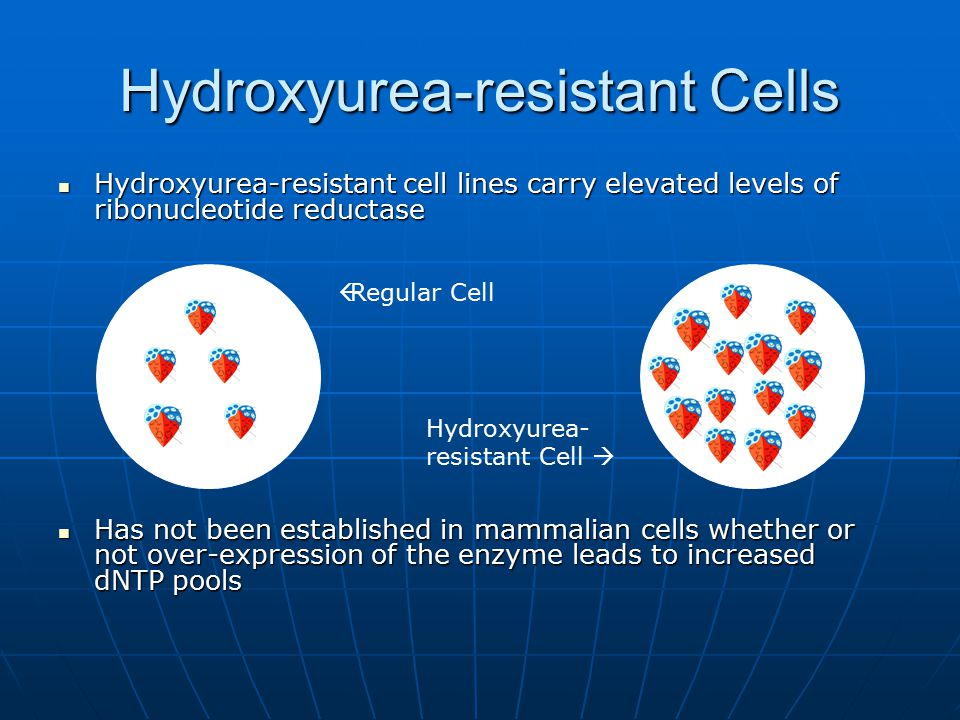 Hydroxyurea-resistant Cells