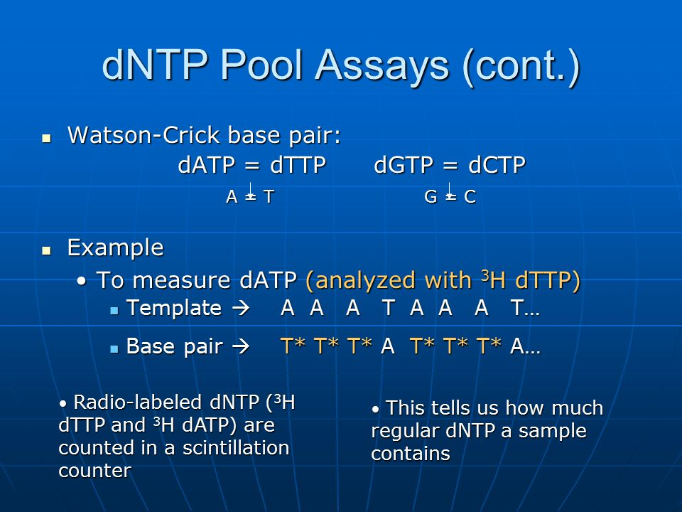 dNTP Pool Assays (cont.)
