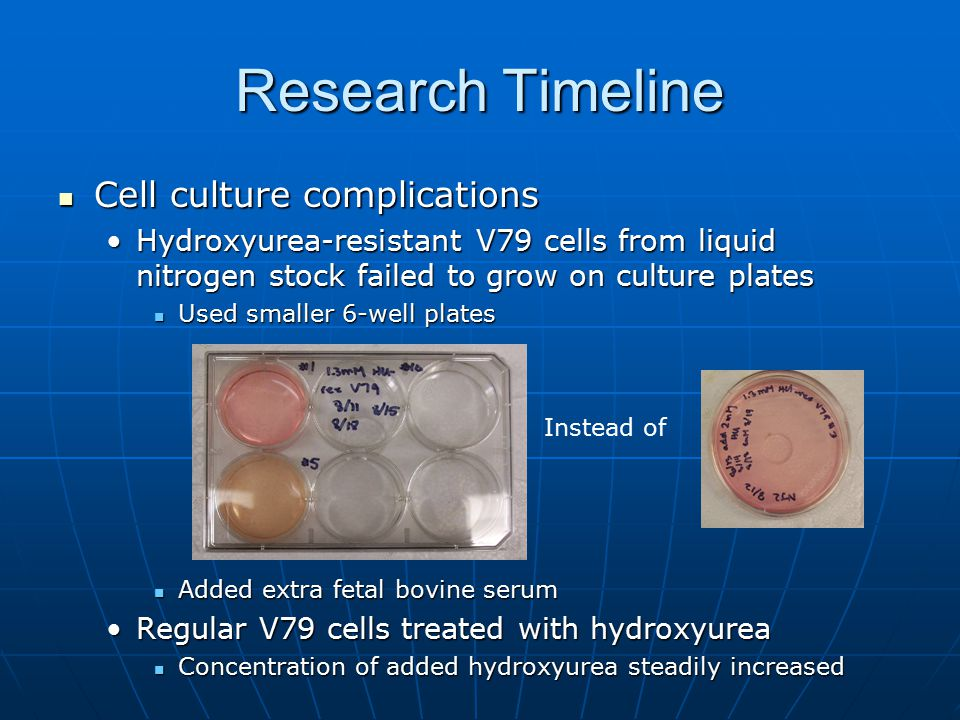 Research Timeline Cell culture complications
