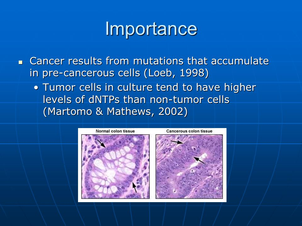 Importance Cancer results from mutations that accumulate in pre-cancerous cells (Loeb, 1998)