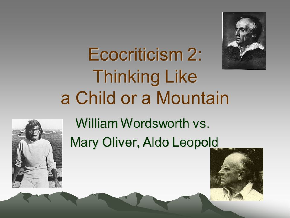 Ecocriticism 2: Thinking Like a Child or a Mountain