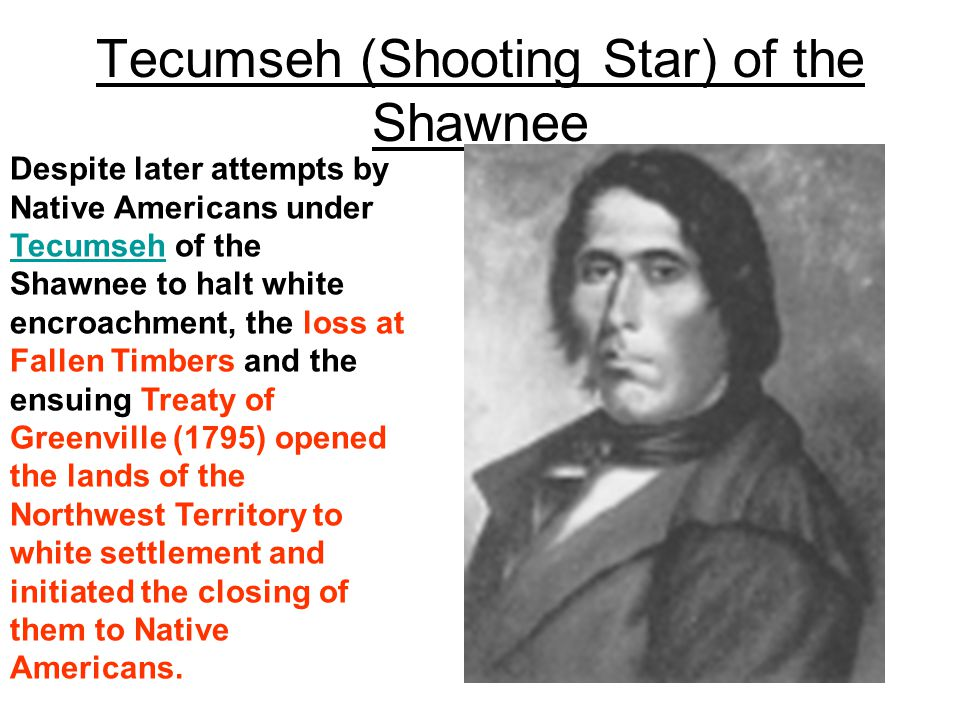 Tecumseh (Shooting Star) of the Shawnee