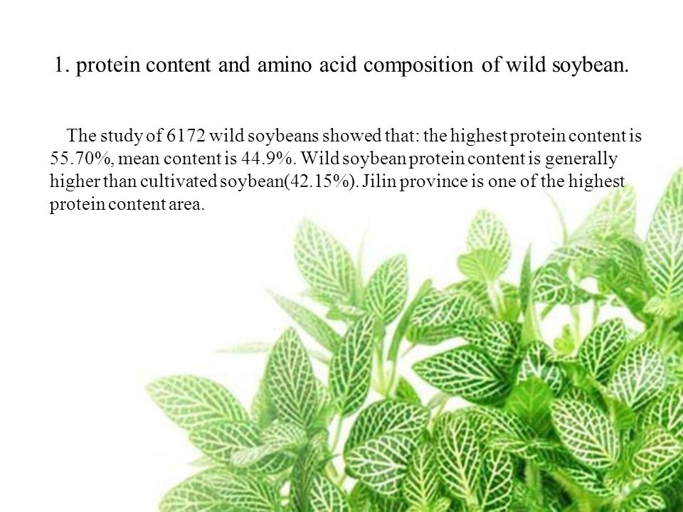 1. protein content and amino acid composition of wild soybean.