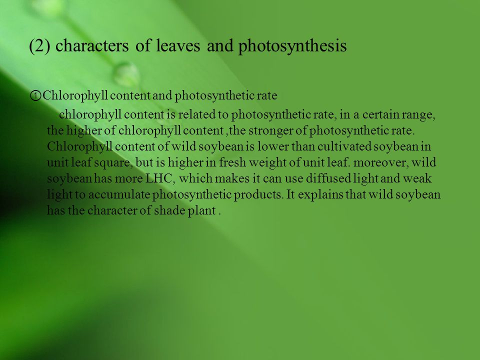 (2) characters of leaves and photosynthesis