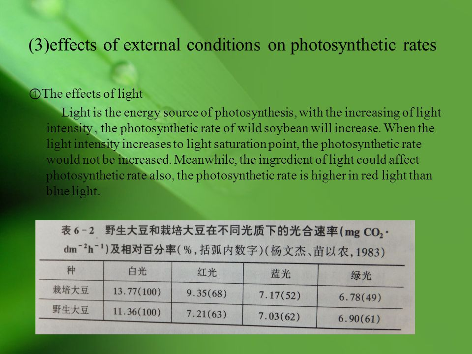 (3)effects of external conditions on photosynthetic rates