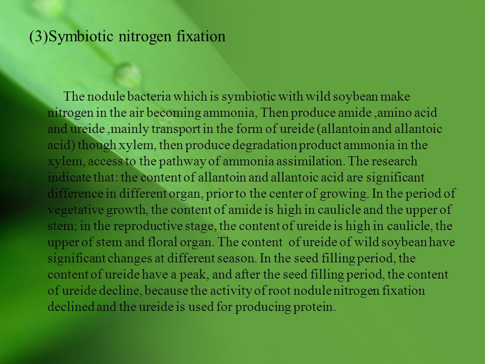 (3)Symbiotic nitrogen fixation