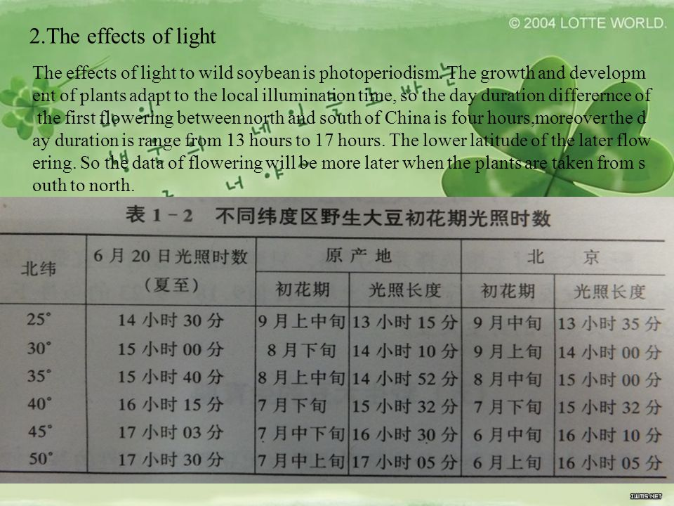 2.The effects of light