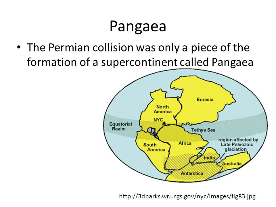 Pangaea The Permian collision was only a piece of the formation of a supercontinent called Pangaea.