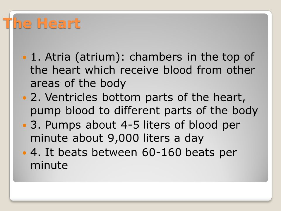 The Heart 1. Atria (atrium): chambers in the top of the heart which receive blood from other areas of the body.