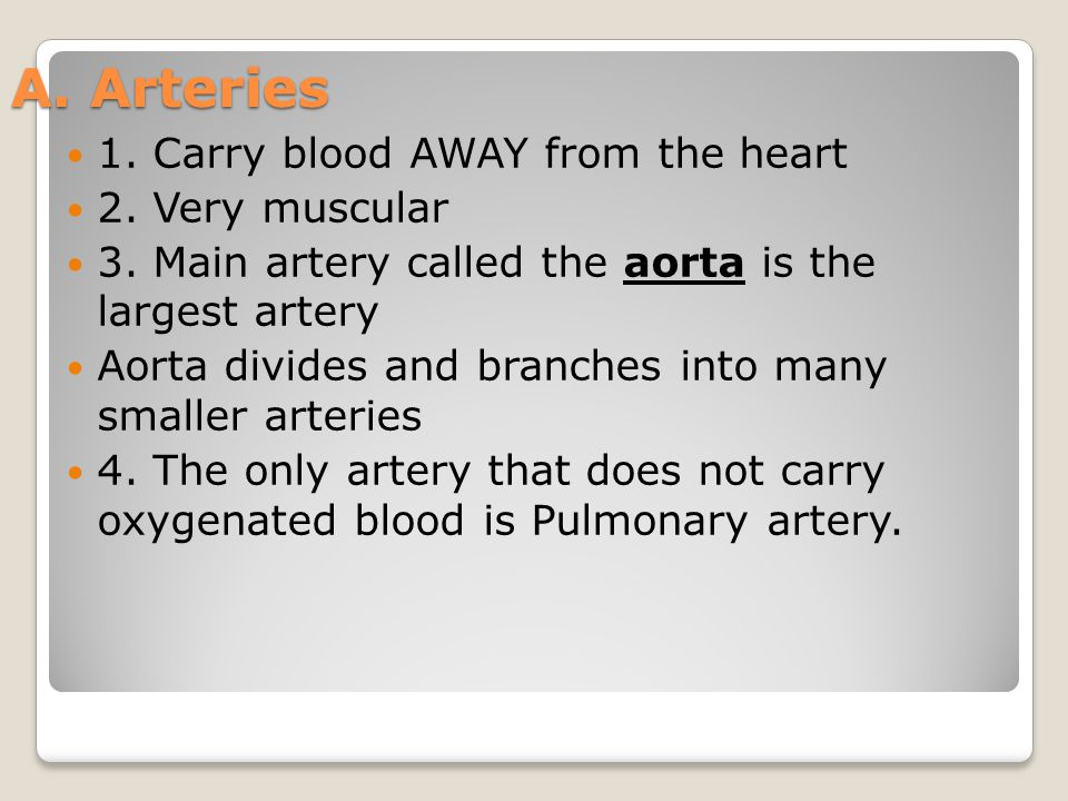 A. Arteries 1. Carry blood AWAY from the heart 2. Very muscular
