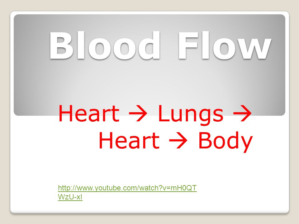 Heart  Lungs  Heart  Body