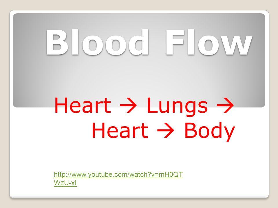 Heart  Lungs  Heart  Body