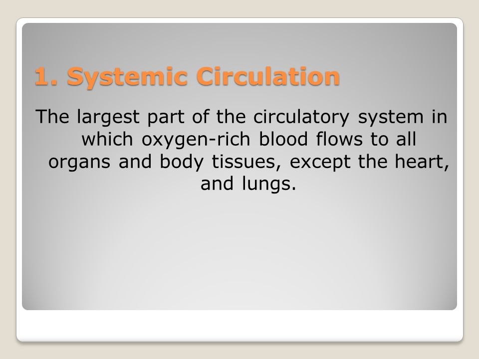 1. Systemic Circulation