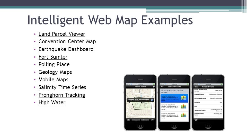 Intelligent Web Map Examples
