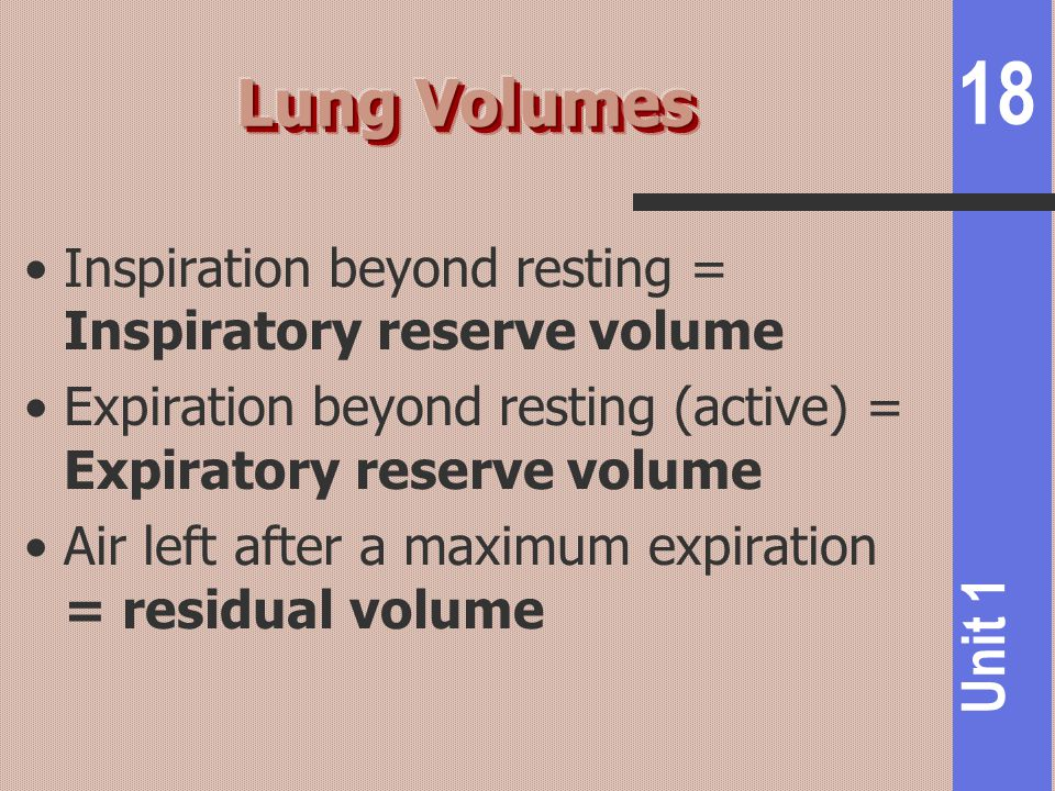 Lung Volumes Inspiration beyond resting = Inspiratory reserve volume