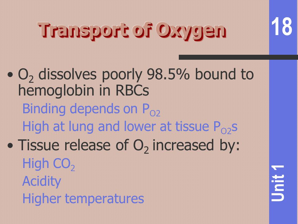 Transport of Oxygen O2 dissolves poorly 98.5% bound to hemoglobin in RBCs. Binding depends on PO2.