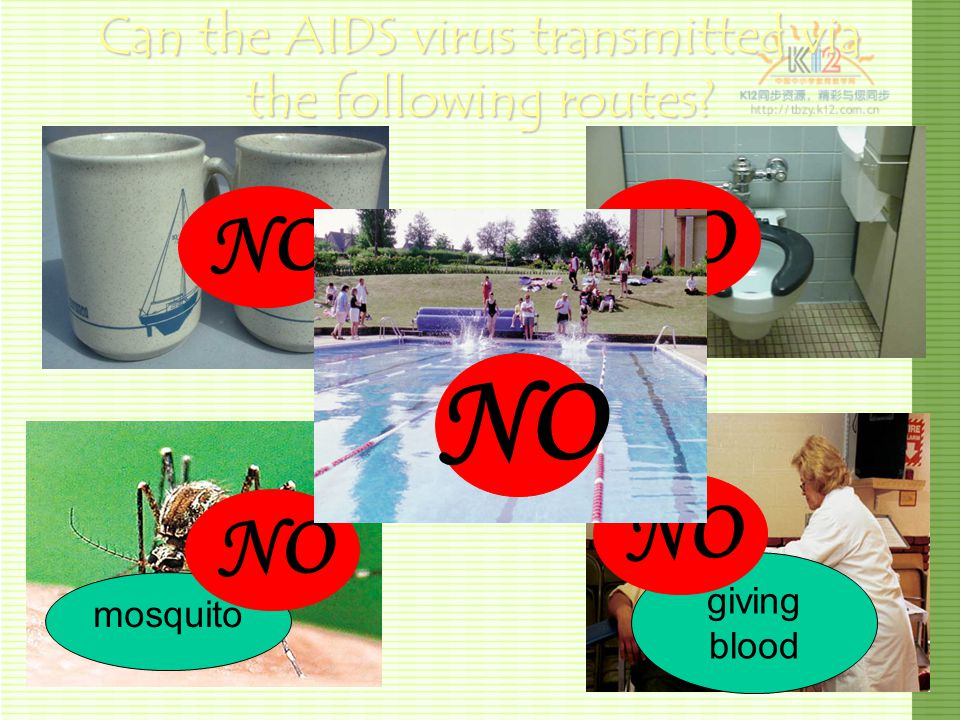 Can the AIDS virus transmitted via the following routes