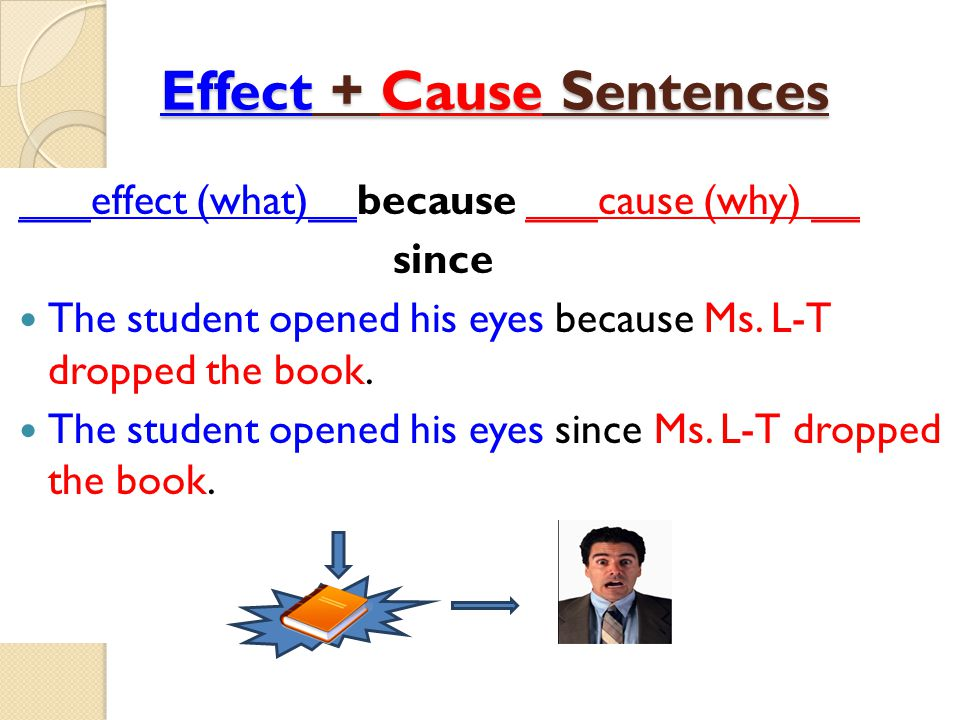 Effect + Cause Sentences