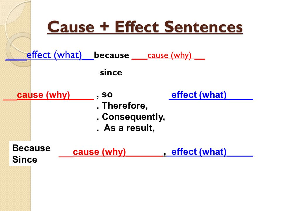 Cause + Effect Sentences