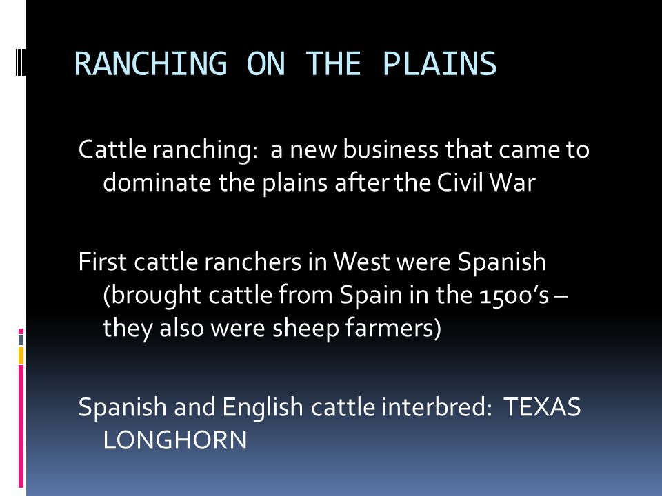 RANCHING ON THE PLAINS