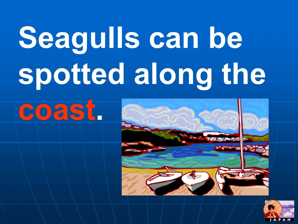 Seagulls can be spotted along the coast.