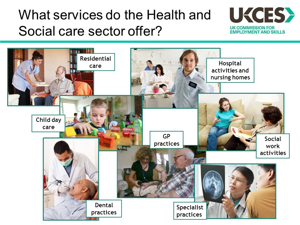 What services do the Health and Social care sector offer