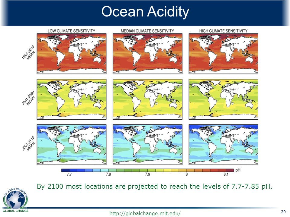 Ocean Acidity By 2100 most locations are projected to reach the levels of 7.7-7.85 pH. 30