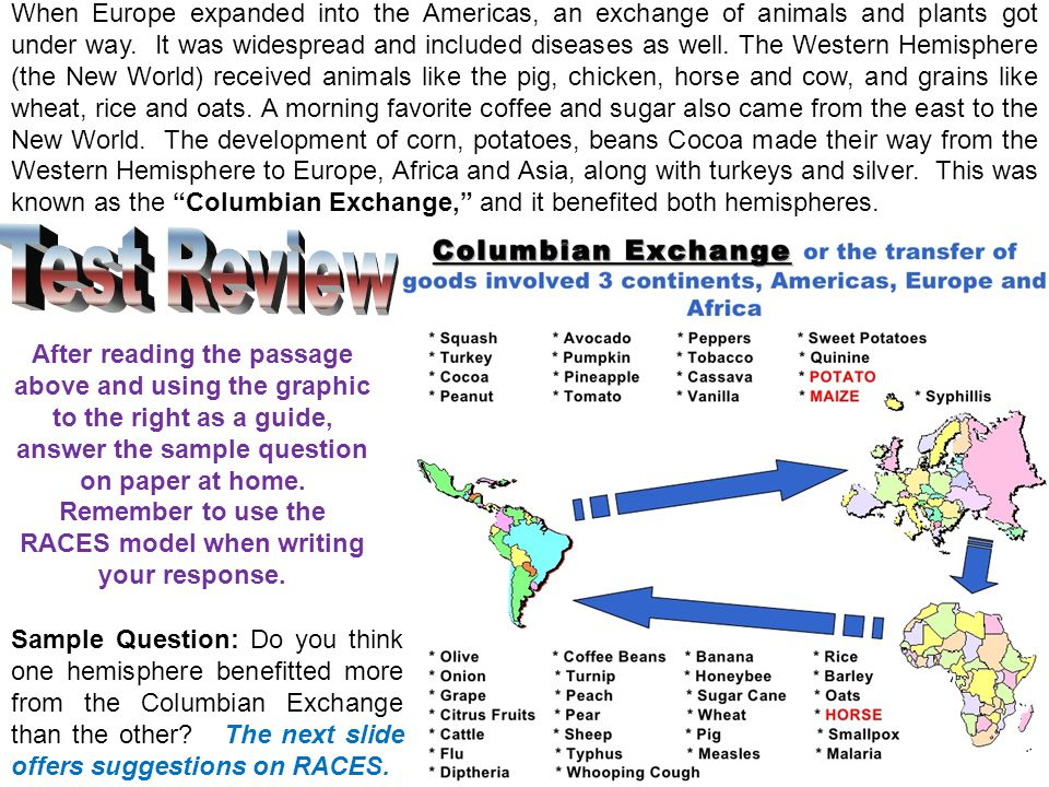 When Europe expanded into the Americas, an exchange of animals and plants got under way. It was widespread and included diseases as well. The Western Hemisphere (the New World) received animals like the pig, chicken, horse and cow, and grains like wheat, rice and oats. A morning favorite coffee and sugar also came from the east to the New World. The development of corn, potatoes, beans Cocoa made their way from the Western Hemisphere to Europe, Africa and Asia, along with turkeys and silver. This was known as the Columbian Exchange, and it benefited both hemispheres.