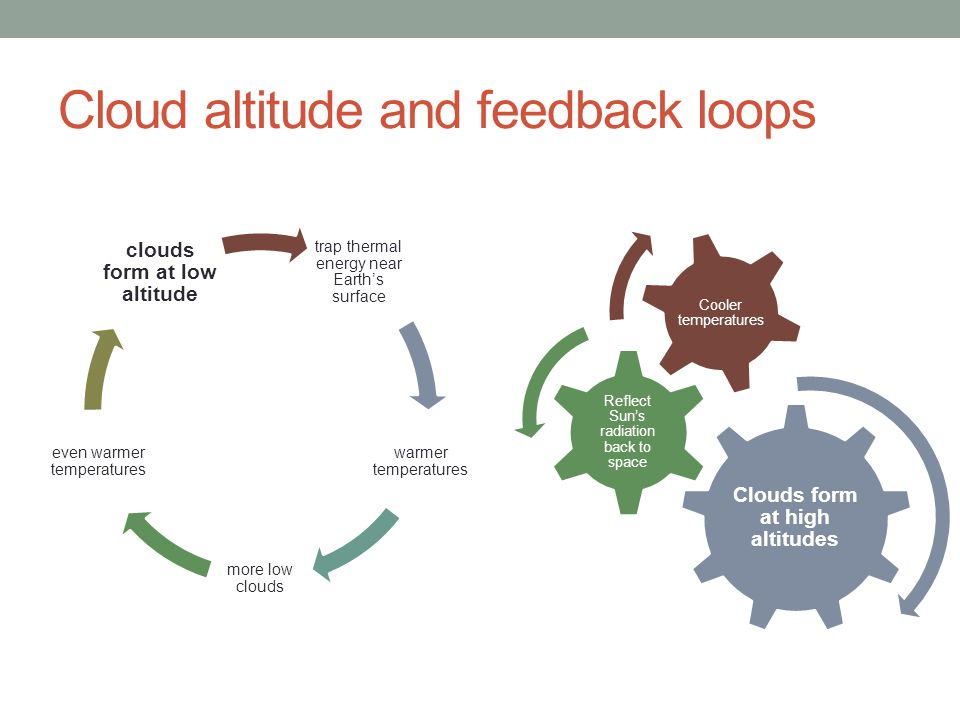 Cloud altitude and feedback loops