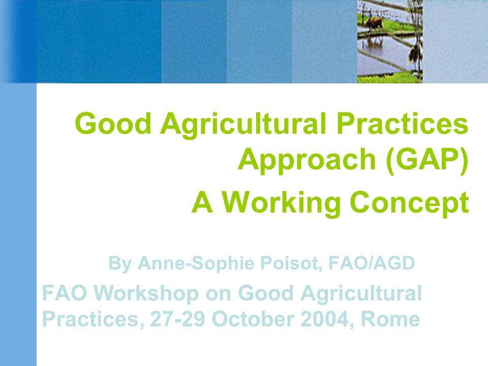 Good Agricultural Practices Approach (GAP) A Working Concept