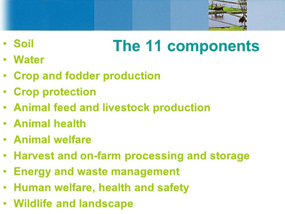 The 11 components Soil Water Crop and fodder production