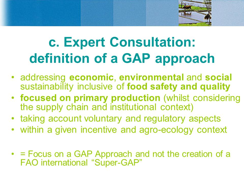 c. Expert Consultation: definition of a GAP approach