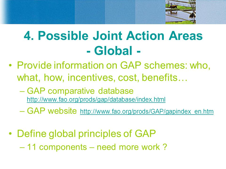 4. Possible Joint Action Areas - Global -