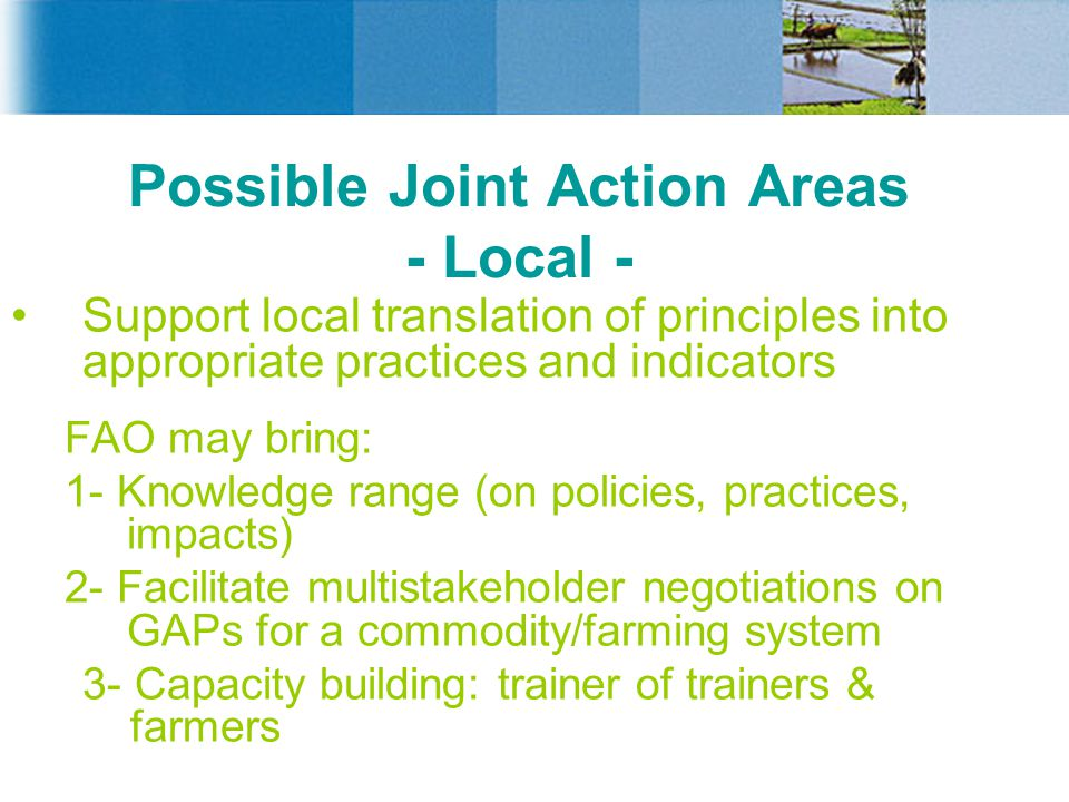 Possible Joint Action Areas - Local -