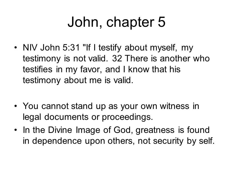 John, chapter 5