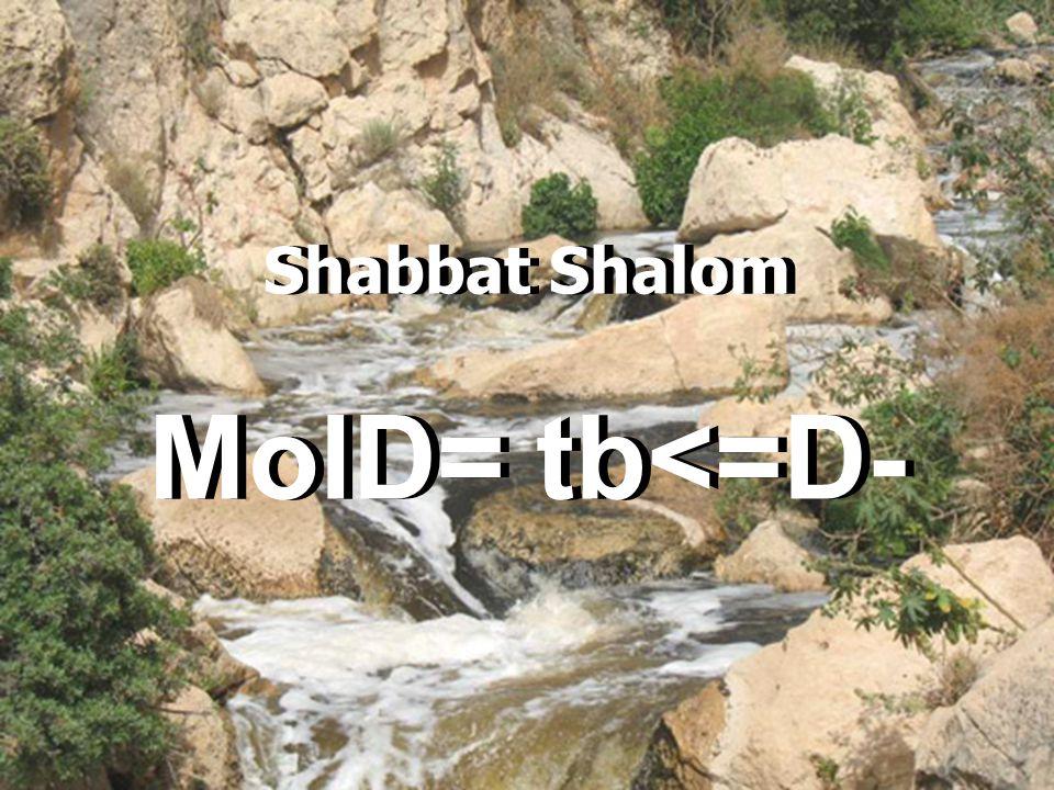 Shabbat Shalom MolD= tb<=D-