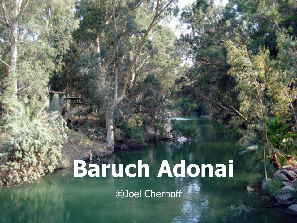 Baruch Adonai ©Joel Chernoff