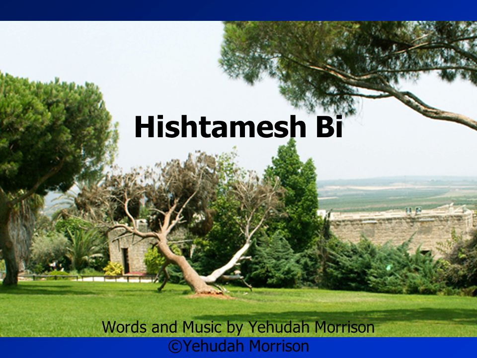 Words and Music by Yehudah Morrison ©Yehudah Morrison