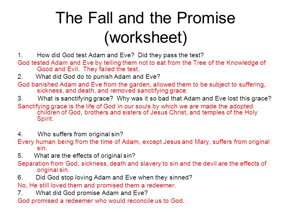 The Fall and the Promise (worksheet)