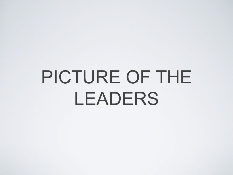 PICTURE OF THE LEADERS